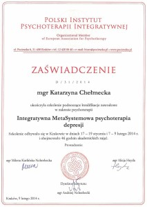 Integratywna MetaSystemowa Psychoterapia Depresji