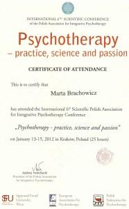 Brachowicz-certyfikat-konferencja-25-godz