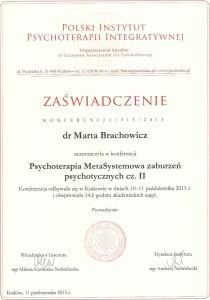Brachowicz-certyfikat-konferencja-cz-II-14-6-godz
