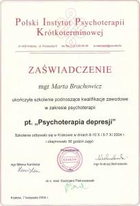 Brachowicz-psychoterapia-depresji
