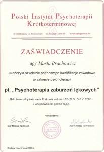 Brachowicz-psychoterapia-zaburzen-lekowych-2005